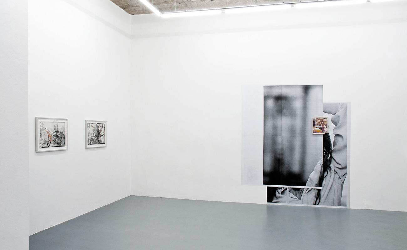 """""""Beauty Free"""" - LSD Galerie Berlin, 2013"""